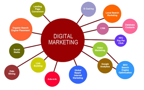 What and Why Of Digital Marketing And Its Roles ?