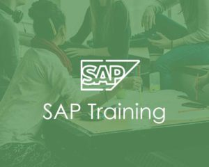 SAP Training institute